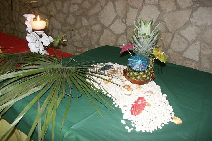 07_party_planet_feste_a_tema_hawaiana